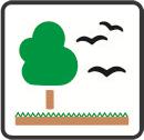 Laudos de Fauna e Cobertura Vegetal